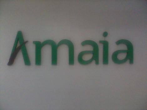 Amaia Land